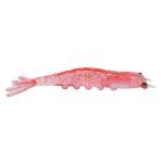 10cm - 43 ova branca